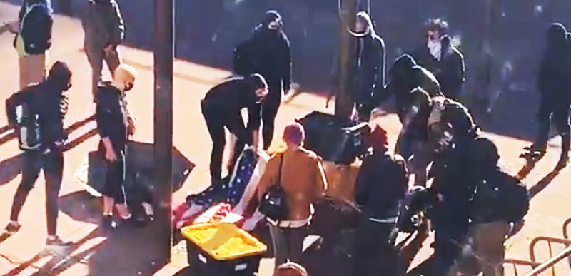 INSURRECTION: Left wing MOB invades GOV'T building TEARS DOWN American Flags